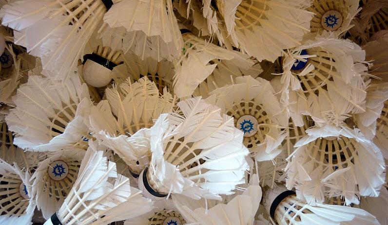 Výsledek obrázku pro badmintonový míček)